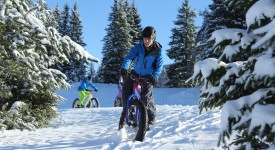 Fatbike_Copyright S Charles_41 BD (3) T