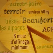 beaufort travelski ot saint sorlin